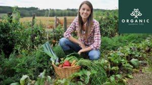 Ways to Make You an Organic Gardening Guru