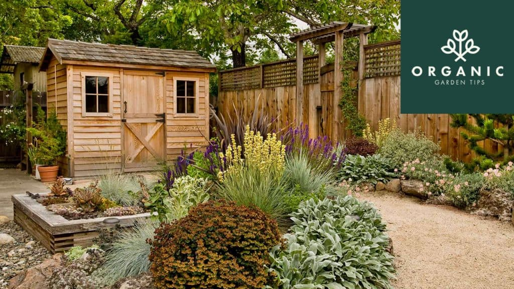11 of the Best Free DIY Shed Plans Online