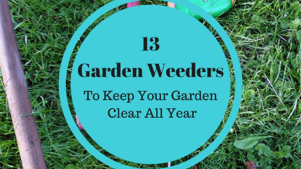 13 Weeders to Keep Your Garden Clear All Year