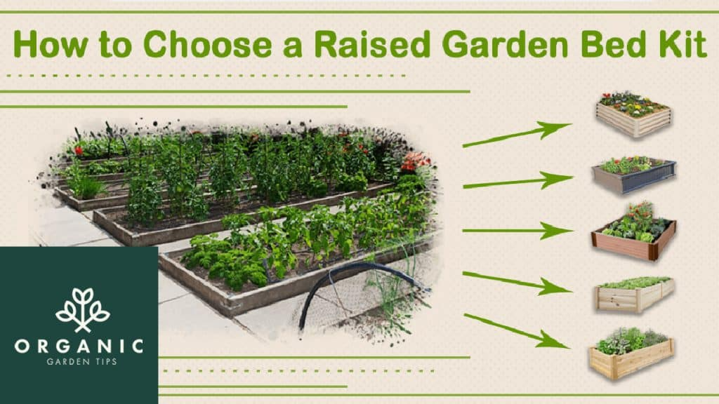 Choosing the Best Raised Garden Bed Kits