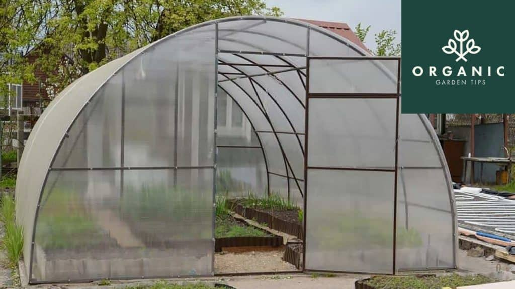 DIY Guide to Heating a Greenhouse