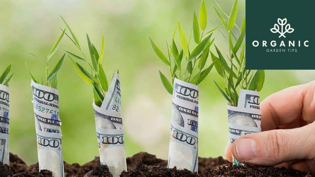 Gardening for Profit