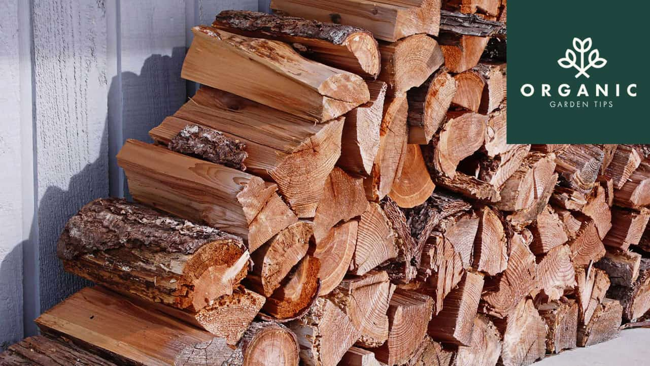 How to Choose the Best Firewood Shed