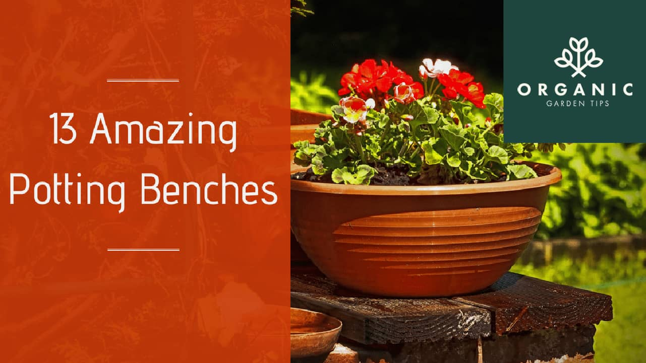 Outdoor Planting Tables and Potting Benches