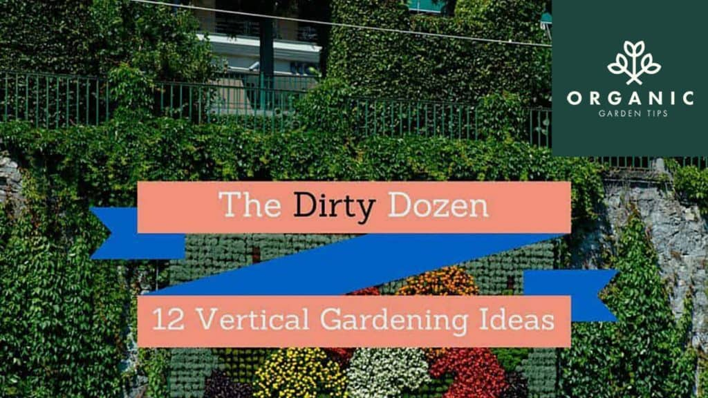 12 Ideas for Taking Your Garden Vertical