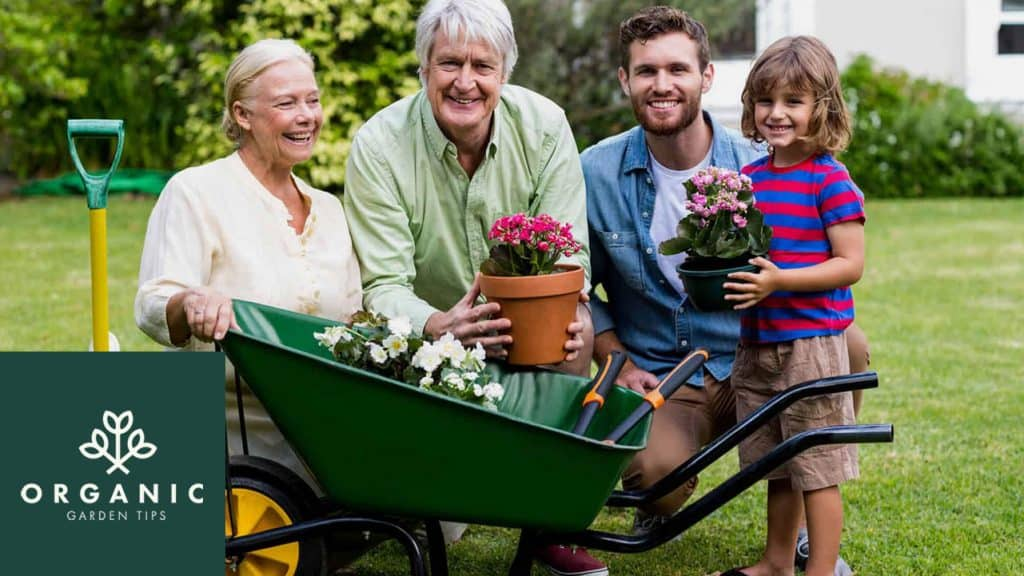The Best Wheelbarrows for Backyard Gardeners
