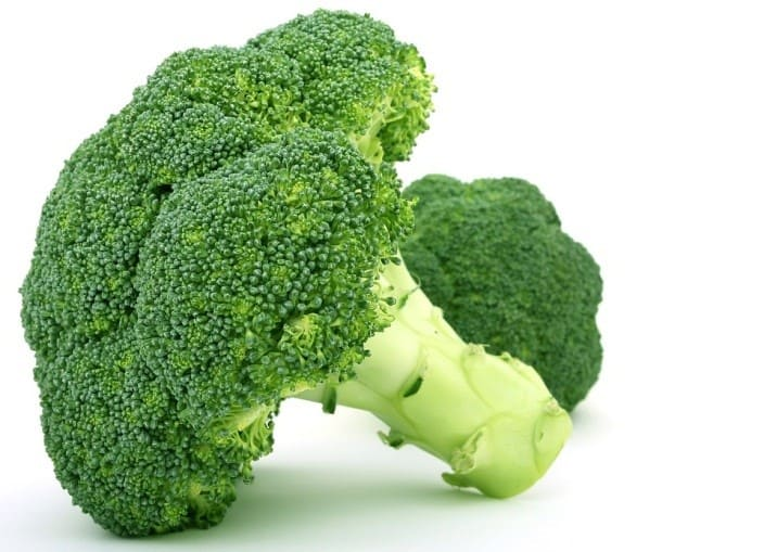 Green broccoli against white background