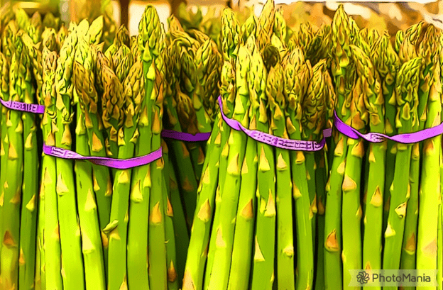 Green asparagus spears