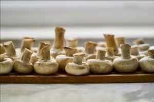 home grown mushrooms